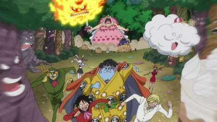 One Piece: Episódio 846